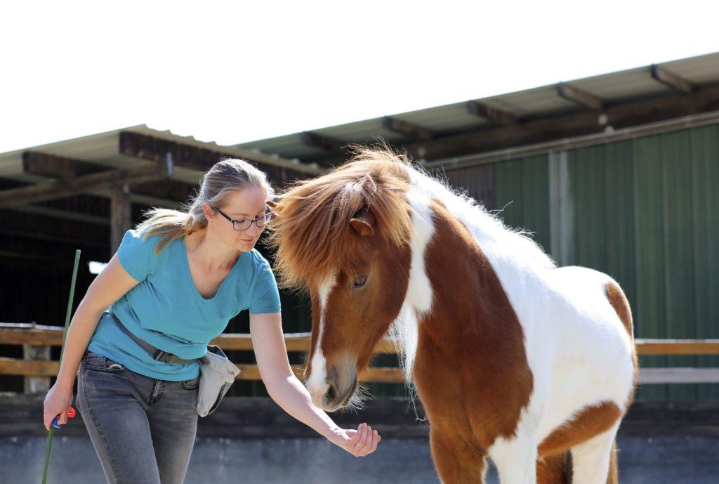 Eva-Marie Essers von equilution mit Pferd beim Clickertraining Targettraining